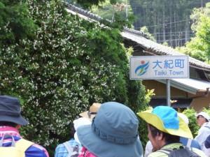 船木橋を宮川の右岸へ渡ると大紀町