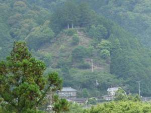 県道747号 打見大台線から望む茶臼山の山頂、秋葉神社