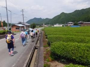 樋ノ谷遺跡付近(県道747号 打見大台線)