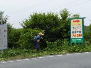 大宮ナマコン(大紀町野添)から野原交差点