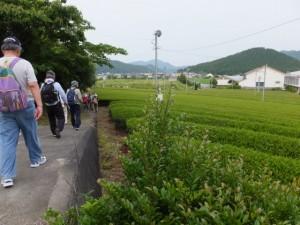 県道711号 神田野原線からグリーンプラザおおだいへ