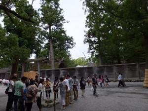 三ツ石周辺と古殿地から姿を消した旧宮の御正殿(外宮)