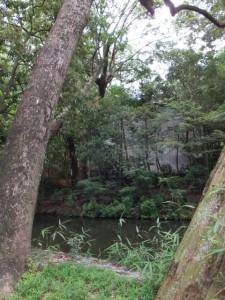 御池越しに望む土宮の新御敷地