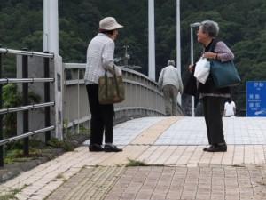 赤崎祭で授与される御神杉(赤崎神社)