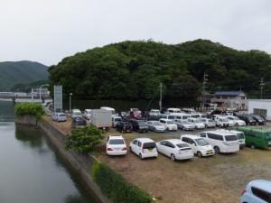 安楽島大橋(加茂川)から望む赤崎神社の社叢