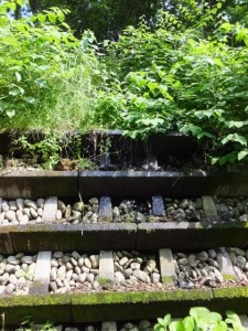 サイクリングロード(大滝峡 大台町青少年旅行村)