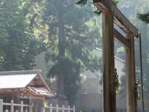 瀧原宮と新御敷地の覆屋