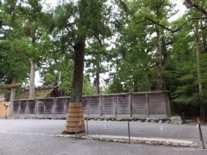 別宮遥拝所前から望む旧宮(外宮)