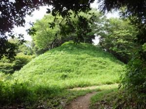 椎ノ木城跡(浄眼寺付近の登り口から阿坂城(白米城)跡へ)
