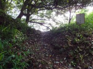 椎ノ木城跡