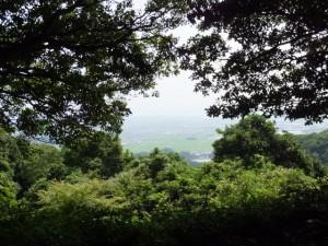 椎ノ木城跡からの眺望