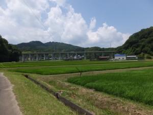 遠望する正法山 浄眼寺方向(松阪市大阿坂町)