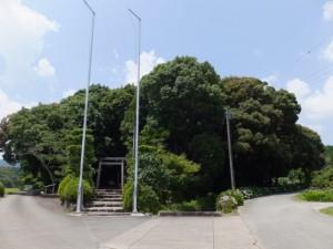 阿射加神社の社叢(松阪市大阿坂町)