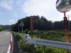 久具都比売橋へ続く道路と久具都比賣神社の社叢