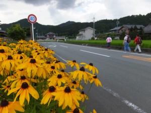 野原神社〜尾合橋(尾合川)