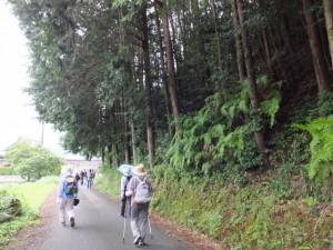 上小川橋(注連指川)〜禅廣山妙色寺