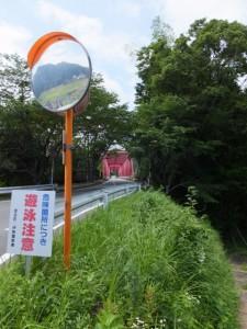 左を望めば鮠川大橋(度会町鮠川)