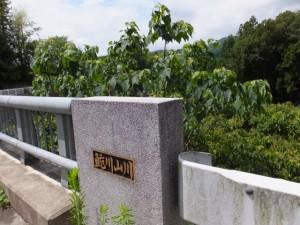 浦ノ上橋(鮠川山川)