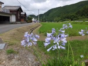徳林寺(度会町当津)〜度会町田間
