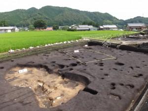 野添大辻遺跡(第3次)調査区、2区の土坑と掘立柱建物
