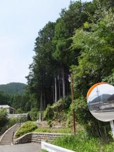 秋葉神社の参道入口付近(大紀町打見)
