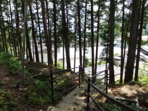 秋葉神社から望む七保小学校(大紀町打見)