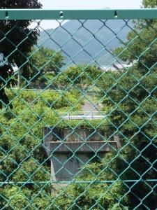 藤川の旧野添橋跡、右岸付近から望む対岸の道路跡