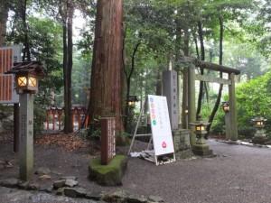 椿岸神社への参道(椿大神社)