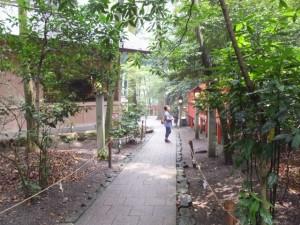 鈿女本宮 椿岸神社への途中(椿大神社)