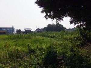 河原神社(毛理神社を同座)の遠望
