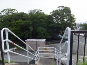 勢田川橋を渡り国道23号から階段を下って栄通神社へ