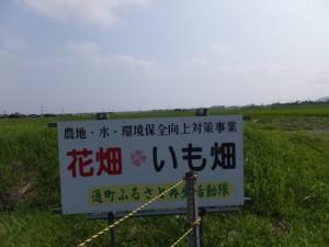 中堤付近(伊勢市通町側)