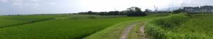 中堤を国道42号方向へ(中堤の左側は伊勢市一色町、右側は伊勢市通町)