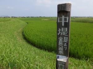 中堤の案内標「中堤 是より全長八百米 一色町」(国道42号付近)