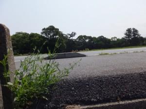 御塩樋管(五十鈴川右岸)脇から御塩浜へ