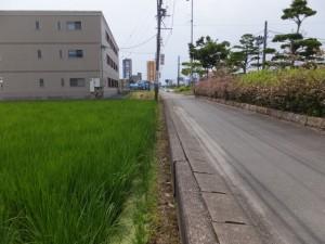 御塩道(国道42号の歩道)