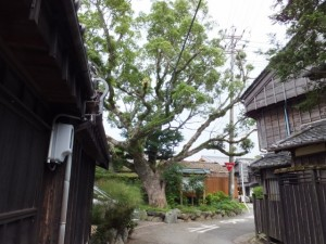 御塩道(二軒茶屋)