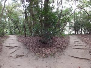 御塩汲入所・御塩焼所へと二見裏側の出入口へに分岐する小径(御塩殿神社)