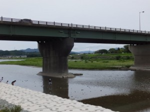 度会橋(宮川)付近