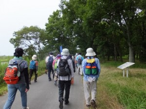 桜の渡し(宮川)の説明板付近〜磯の渡し跡広場(ラブリバー公園)へ