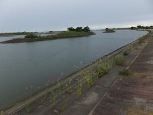 ラブリバー公園(宮川右岸)