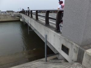 第二湊橋(大湊川)