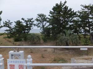 鷲ヶ浜(大湊海岸)