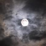 もうすぐ、2014年最大の満月「スーパームーン」に