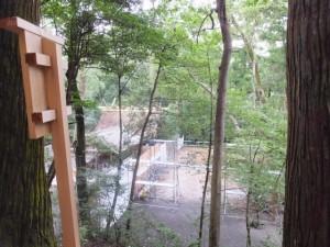 多賀宮への石階から望む御造営が開始される風宮の新御敷地(外宮)