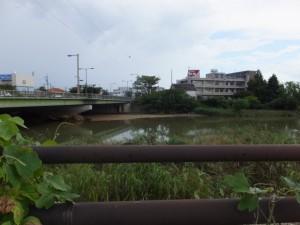伊勢-3(8517)から望む安濃川の対岸(昔の街道?)