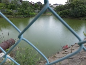 池、伊勢-3(14420)