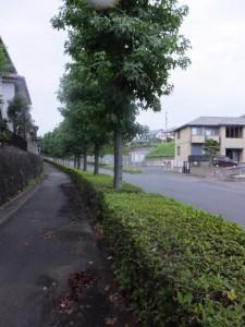 伊勢-3(14420)〜(14745)