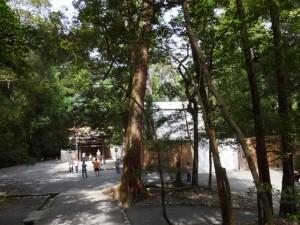 多賀宮への石階付近から望む御造営中の土宮(外宮)