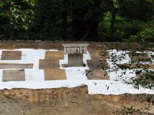 多賀宮への石階から望む御造営が開始される風宮(外宮)